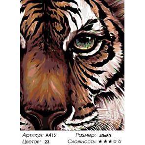 Глаз тигра Раскраска картина по номерам на холсте A415