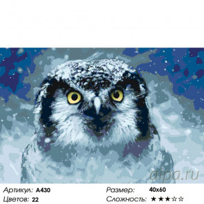 Количество цветов и сложность Зимняя сова Раскраска картина по номерам на холсте A430