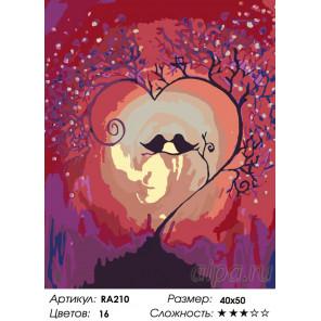 Количество цветов и сложность Магия любви Раскраска картина по номерам на холсте RA210