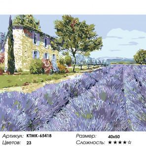 Лаванда Прованса Раскраска картина по номерам на холсте KTMK-65418
