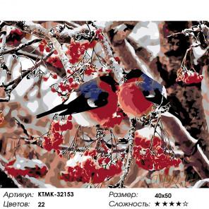 Снегири на рябине Раскраска картина по номерам на холсте KTMK-32153