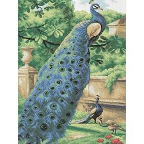Павлины Канва с рисунком для вышивки бисером