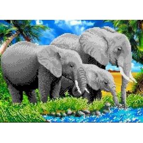 Слоны Канва с рисунком для вышивки бисером