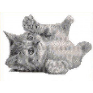 Котенок Канва с рисунком для вышивки бисером