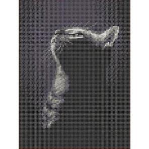 Котенок в ночи Канва с рисунком для вышивки бисером