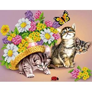 Котики Канва с рисунком для вышивки бисером