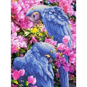 Голубые Ара Канва с рисунком для вышивки бисером
