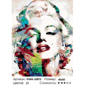 Количество цветов и сложность Девушка-видение Раскраска картина по номерам на холсте KTMK-25872