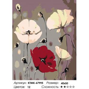 Количество цветов и сложность Трепет маков Раскраска картина по номерам на холсте KTMK-67995