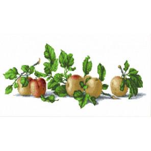 Натюрморт с яблоками Канва с рисунком для вышивки бисером