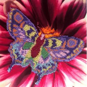 Бабочка Набор для вышивки бисером FeDi