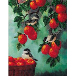 Яблочный спас Набор для вышивки бисером FeDi