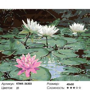 Количество цветов и сложность Озеро с лотосами Раскраска картина по номерам на холсте KTMK-36303