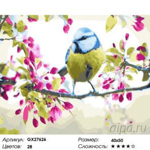 Пение птиц Раскраска картина по номерам на холсте GX27626