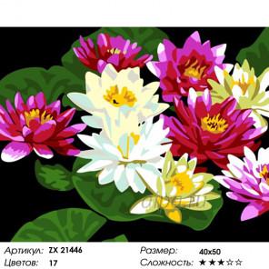 Количество цветов и сложность Цветы лотоса Раскраска картина по номерам на холсте ZX 21446