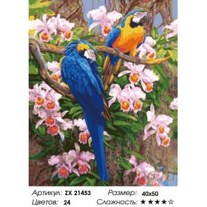 Количество цветов и сложность Яркие попугаи Раскраска картина по номерам на холсте ZX 21453