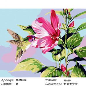 Количество цветов и сложность Колибри и гибискус Раскраска картина по номерам на холсте ZX 21413