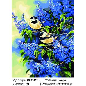 Синички в серени Раскраска картина по номерам на холсте ZX 21459
