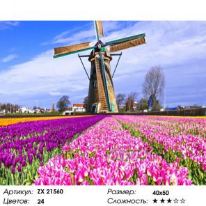 Количество цветов и сложность Фестиваль тюльпанов в Голландии Раскраска картина по номерам на холсте ZX 21560