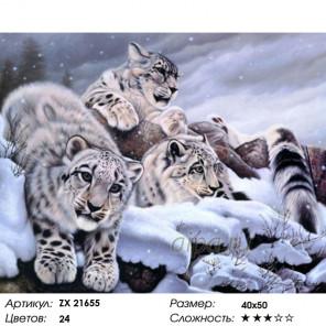 Количество цветов и сложность Семья барсов Раскраска картина по номерам на холсте ZX 21655