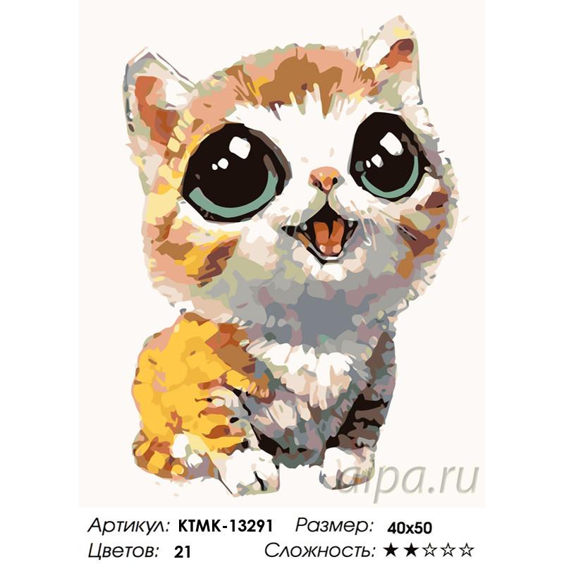 KTMK-13291 Котенок с выразительными глазами Раскраска ...