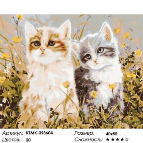 Котята на лугу Раскраска картина по номерам на холсте KTMK-393604
