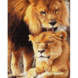 Ласковый лев Раскраска картина по номерам на холсте Z-GX23217