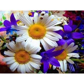 Полевые цветы Ткань для вышивки лентами Каролинка
