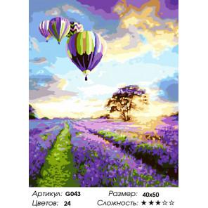 Количество цветов и сложность Воздушные шары над лавандой Раскраска картина по номерам на холсте G043