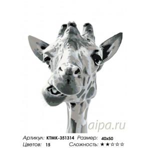 Количество цветов и сложность Веселый жираф Раскраска по номерам на холсте Живопись по номерам KTMK-351314