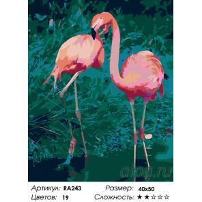Количество цветов и сложность Танец фламинго Раскраска по номерам на холсте Живопись по номерам RA243