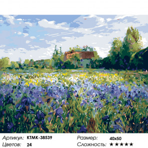 Количество цветов и сложность Поле ирисов Раскраска по номерам на холсте Живопись по номерам KTMK-38539