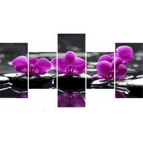 Орхидея Модульная картина по номерам на холсте с подрамником WX1067