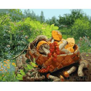 Грибная корзинка Раскраска картина по номерам на холсте