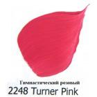 2248 Гимнастический розовый Розовые цвета Акриловая краска FolkArt Plaid