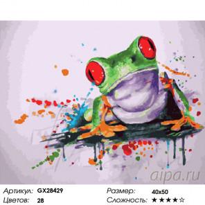 Количество цветов и сложность Красноглазая лягушка Раскраска картина по номерам на холсте GX28429