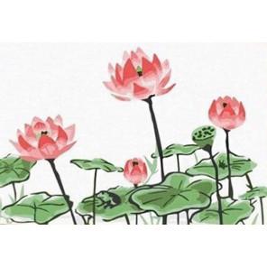 Розовые цветы Раскраска картина по номерам PA067