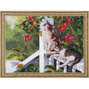 Кошки Набор для вышивания бисером на подрамнике Color Kit VS022