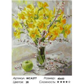 Количество цветов и сложность Букет нарциссов Раскраска картина по номерам на холсте МСА277