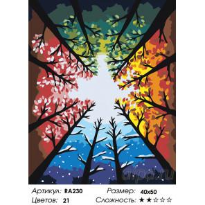 Количество цветов и сложность Цвета времен года Раскраска картина по номерам на холсте RA230