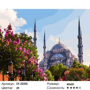 Количество цветов и сложность Мечеть. Стамбул Раскраска картина по номерам на холсте ZX 22322