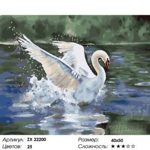 Количество цветов и сложность Лебедь белая Раскраска картина по номерам на холсте ZX 22200