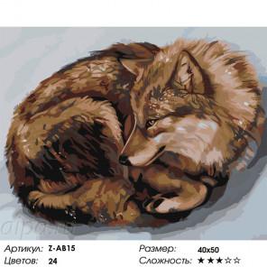 Волчица Раскраска по номерам на холсте Живопись по номерам Z-AB15