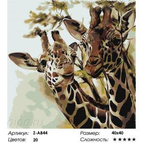 Два жирафа Раскраска по номерам на холсте Живопись по номерам Z-AB44
