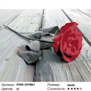Сложность и количество цветов Красная роза на сером Раскраска картина по номерам на холсте KTMK-2474861