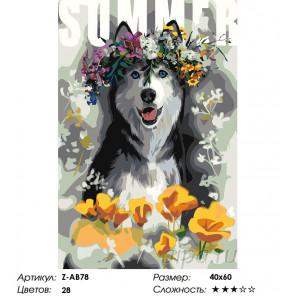 Количество цветов и сложность Скоро лето Раскраска картина по номерам на холсте Z-AB78