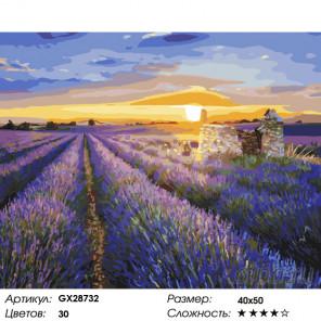 Закат над лавандой Раскраска картина по номерам на холсте GX28732