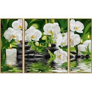 Wellness-Oase Триптих Раскраска картина по номерам ( Картина ) акриловыми красками Schipper (Германия)