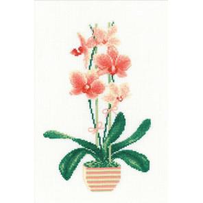 В рамке Жёлтая орхидея Набор для вышивания Риолис 1161