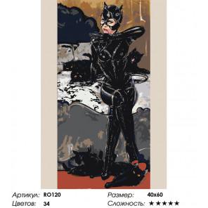 Сложность и количество цветов Женщина-кошка Раскраска картина по номерам на холсте RO120
